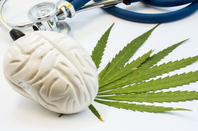 How Does CBD Affect the Human Brain?
